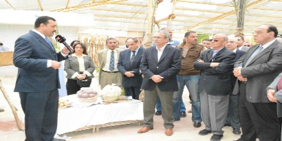 Minia Governor Visits CEOSS Annual Development Achievements Fair in Minia